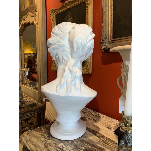 Neoclassical Style Large Plaster Bust of Aphrodite For Sale - Image 10 of 11