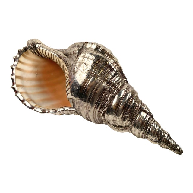 Mid 20th Century Sterling Silver Coated Conch Shell For Sale