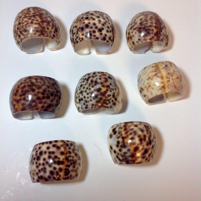Natural Cheetah Shell Napkin Rings - Set of 8 - Image 5 of 6