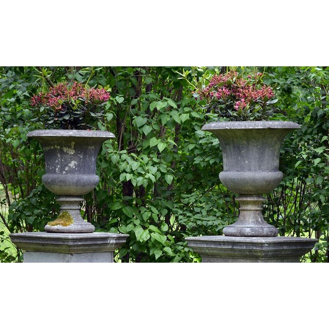 Large Stone Urns on Pedestals For Sale - Image 4 of 4