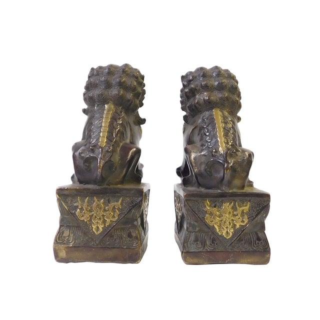 Brown Bronze Golden Fengshui Foo Dogs - Pair - Image 4 of 6