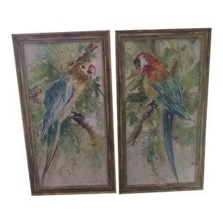 Vintage Parrot Paintings - A Pair