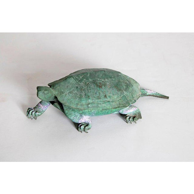 A beautifully patinated bronze sculpture of a walking tortoise. Realistically portrayed with face, toes, and patterned...