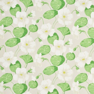 Schuamcher Nasturtium Wallpaper in Stone (8 Yards) For Sale