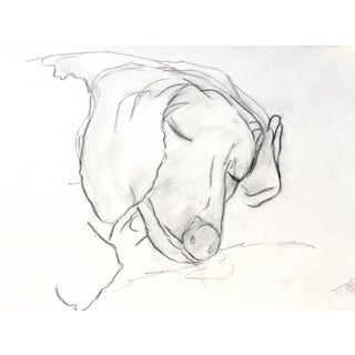 """""""Sleeping Beagle"""" Contemporary Abstract Figurative Charcoal Drawing by Martha Holden For Sale"""