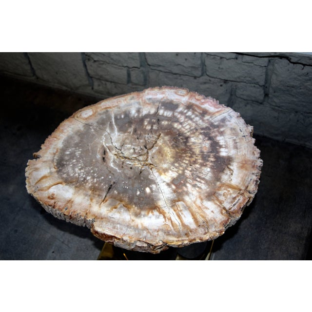 Petrified Wood Table With Brass and Chrome Base For Sale - Image 4 of 13