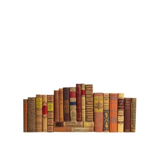 Sunset Shades : Set of Twenty Decorative Books