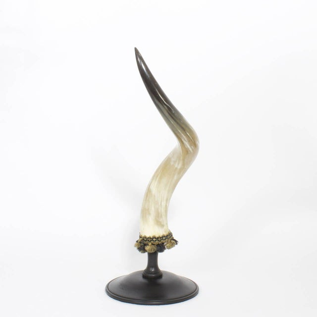 Mid-Century Large and Dramatic Polished Horns on Mounts - A Pair For Sale - Image 4 of 9