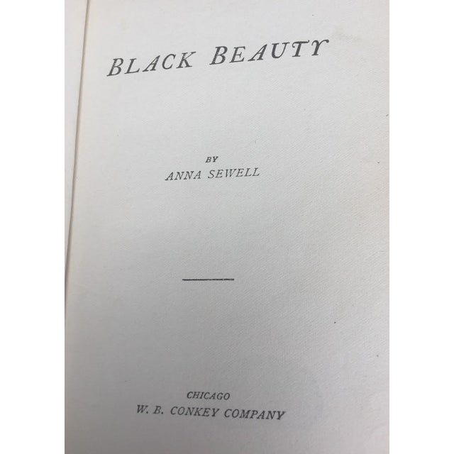 Paper Black Beauty by Ana Sewell For Sale - Image 7 of 8