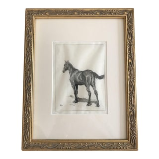 Late 19th Century Antique Framed Horse Etching Print For Sale