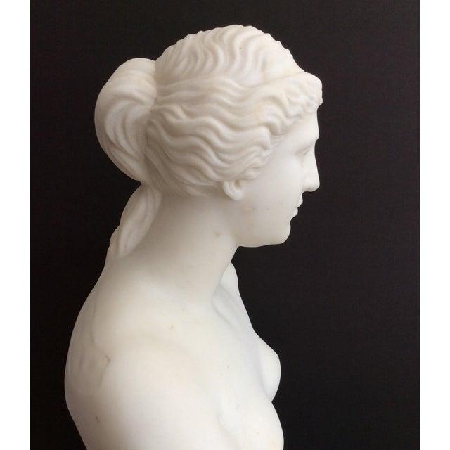 19th Century Venus De Milo Marble Bust For Sale In Atlanta - Image 6 of 12