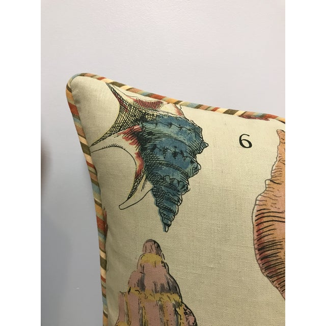 Specimen Sea Shell Print Decorative Throw Pillows - a Pair For Sale - Image 4 of 9
