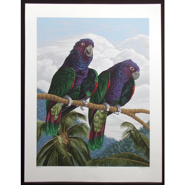 Realistic hand signed limited edition serigraph art prints of 2 parrots by Dallas John. Hand signed, titled, dated '83 and...