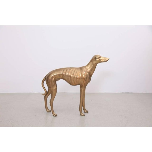 Figurative Extraordinary Huge Brass Dog or Greyhound, 1960s For Sale - Image 3 of 7