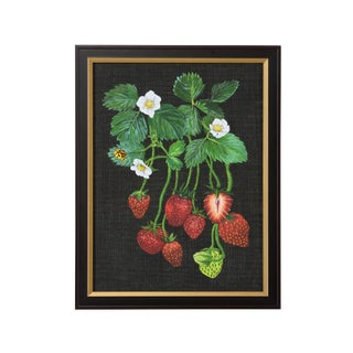 Chelsea House Inc Strawberry Study II Print