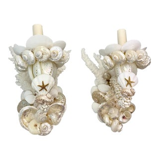 White Shell Sconces - a Pair For Sale
