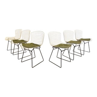 1960s Mid-Century Modern Harry Bertoia for Knoll Wire Chairs - Set of 6 For Sale