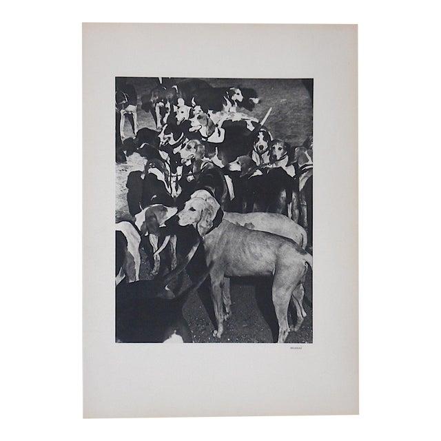 Vintage Heliogravure Photo by Brassai-Verve-Paris-1939 For Sale
