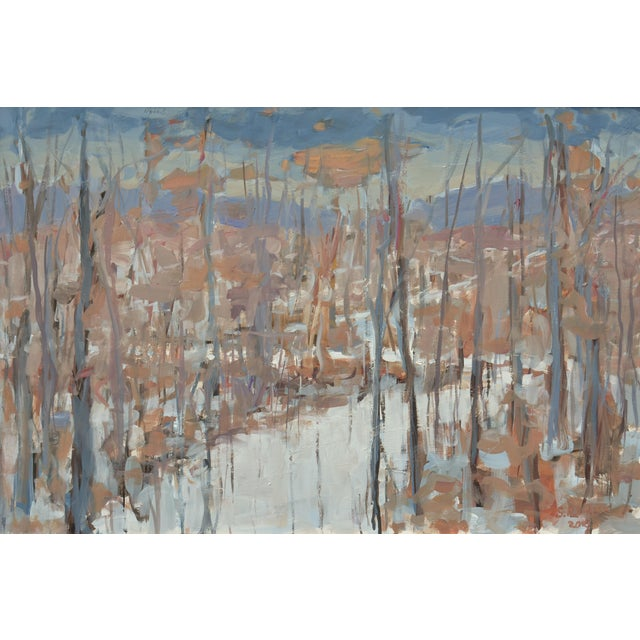 A vivid memory of walking beautiful, old logging roads on a stunning winter day in Vermont. An overcast sky allowing a...