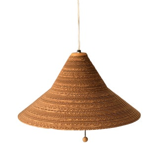 1970s Vintage Hanging Pendant Lamp by Gregory Van Pelt For Sale
