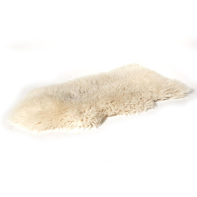 "Sheep Skin Rug - 4'2"" x 2'3"" - Image 2 of 5"