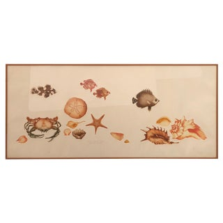 1970s Nautical Summery Limited Edition Embossed Print of Seashells For Sale