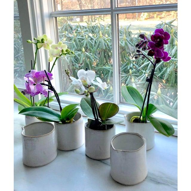 Boho Chic Organic Modern Ceramic Cachepots-Set of 6 For Sale - Image 3 of 6
