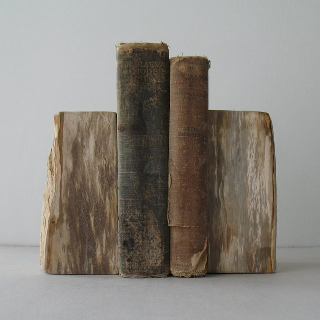 Petrified Wood Bookends - A Pair - Image 7 of 9