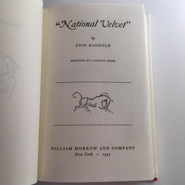 National Velvet Enid Bagnold Classic Horse Tale For Sale - Image 4 of 6