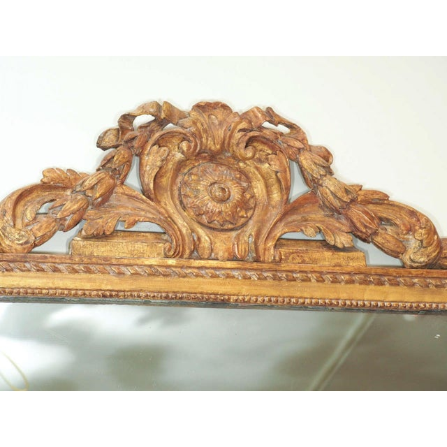 Finely Carved Louis XVI Style Mirror - Image 3 of 8