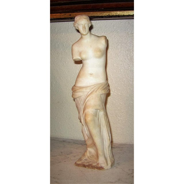 Stone 19c Italian Marble Figurine of Venus De Milo For Sale - Image 7 of 12