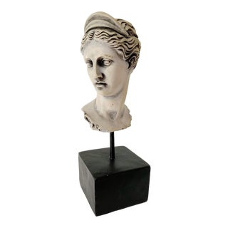 Neoclassical Inspired Plaster Female Head Bust For Sale