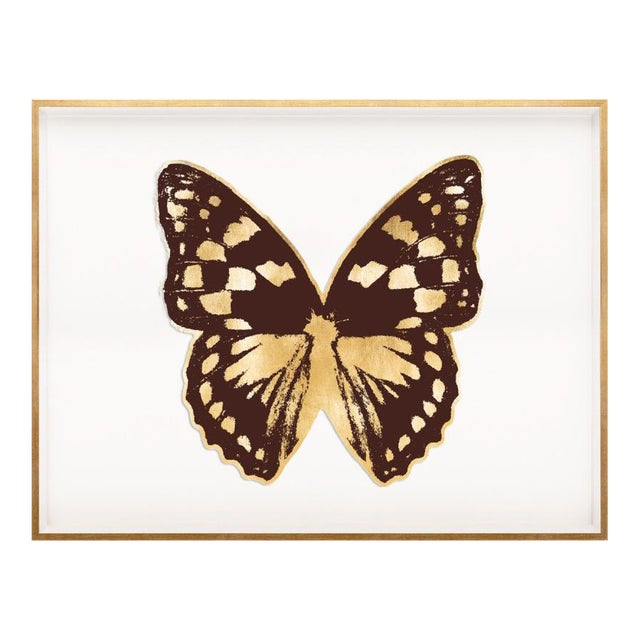 Butterfly Royale, Brown 1 Framed Artwork For Sale