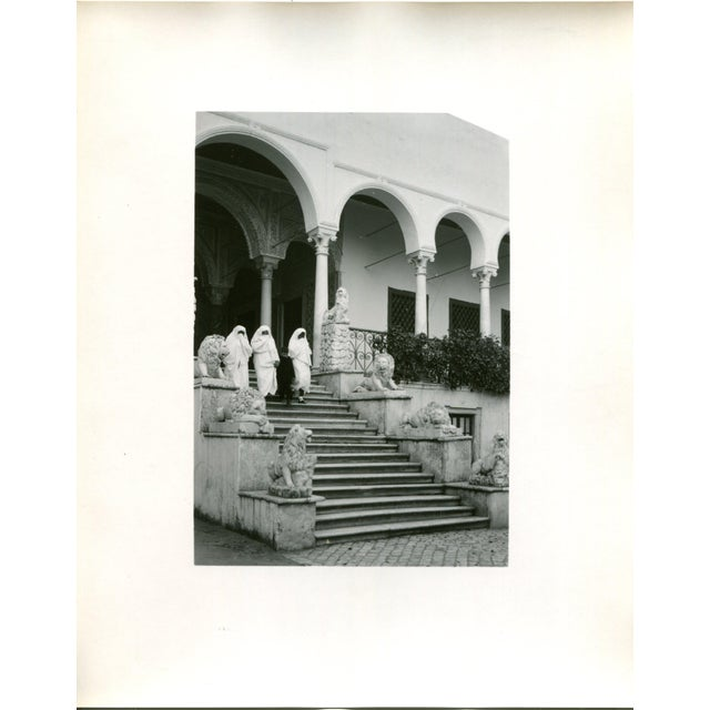 Vintage 1950's Photograph Bardo Palace, Women at the Lion Entrance Tunis Tunisia - Image 2 of 3