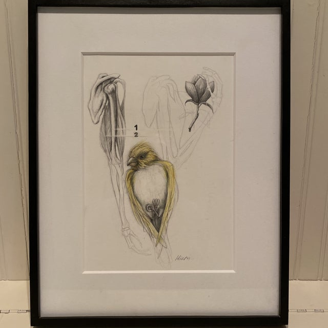 """""""Yellow Bird"""" Contemporary Bird Graphite Drawing, Framed For Sale In Houston - Image 6 of 6"""