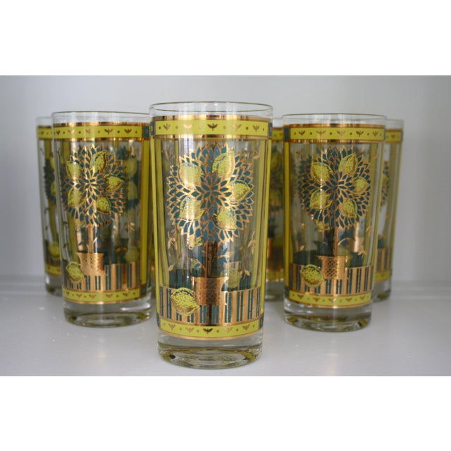 Georges Briard Lemon Tree Highball Glasses Set Of 8
