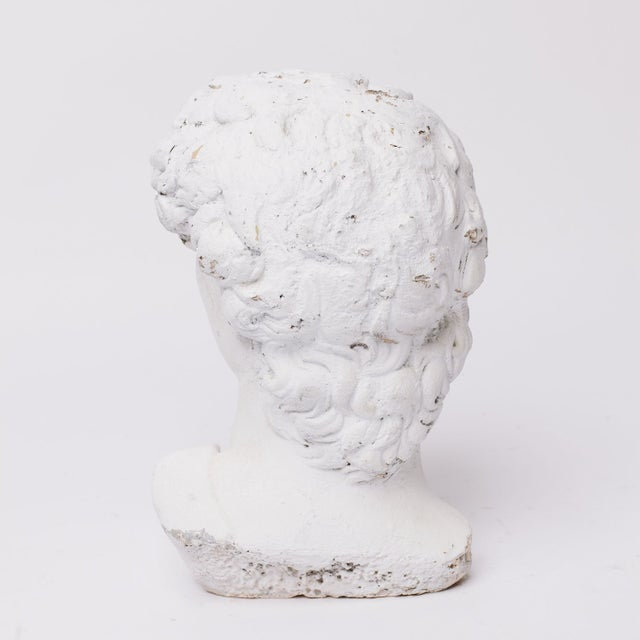 Plaster Grecian Head Sculpture For Sale - Image 4 of 5