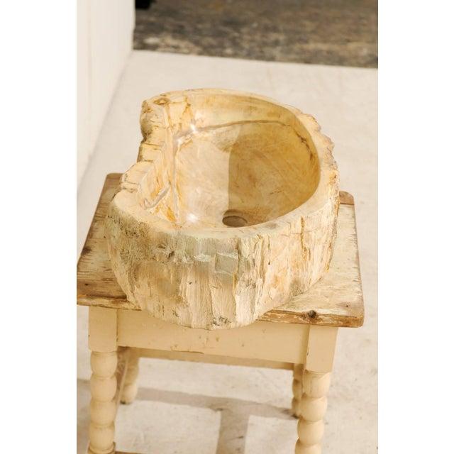 Wood Organic Modern Petrified Wood Sink For Sale - Image 7 of 8