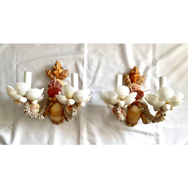 Shell Neutral Two-Light Shell Sconces - a Pair For Sale - Image 7 of 7