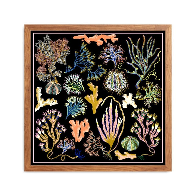 Seaweed botanical giclée print based on the original art installation 'Into the Sea Forest' for the Royal Albert Memorial...