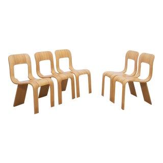 Set of 5 stacking plywood chairs by Gigi Sabadin for Stilwood Italy 1973