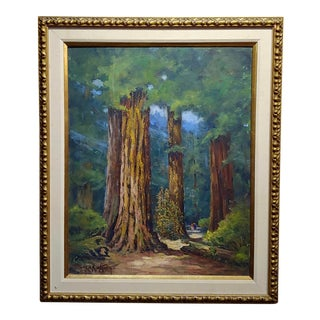 Frank Harvey Cutting -Beautiful California Redwood Trees-Oil Painting C1950s For Sale