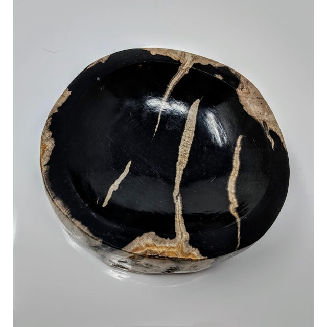 Petrified Wood Bowl, Catchall or Candle Holder For Sale - Image 9 of 11