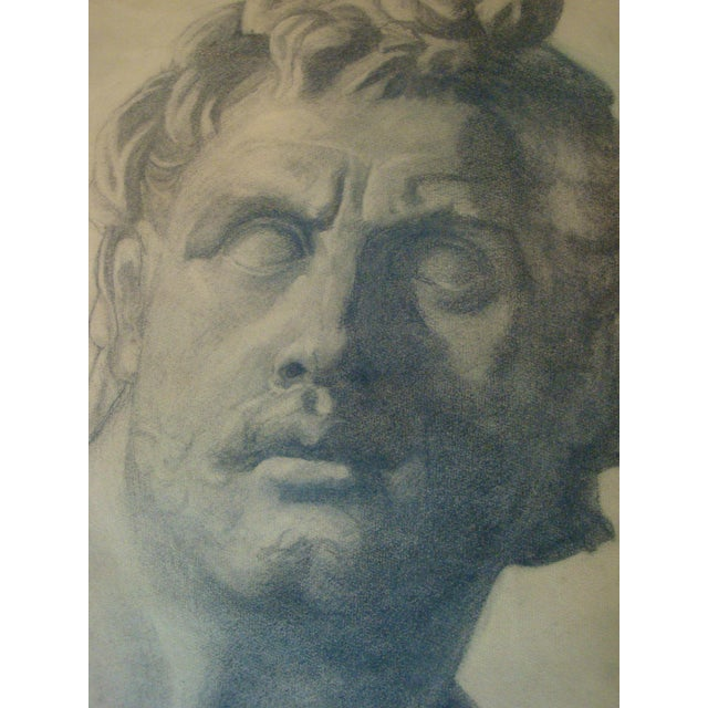 Grand Tour Classical Bust Sculpture Charcoal Drawing, C. 1915 For Sale - Image 3 of 7