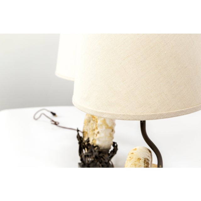Fossilized Nautilus & Bronze Laurasia Table Lamp by Tuell + Reynolds (2 Available) For Sale - Image 10 of 13