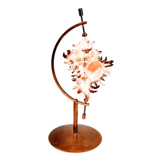 Vintage Seashell on Brass Stand For Sale