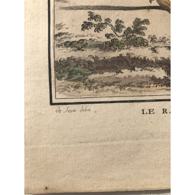 18th Century French Bird Engraving Signed by Jacques De Sève Featuring a Rale De Terre For Sale In Atlanta - Image 6 of 13