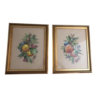 Vintage Still Life Fruit Watercolor Paintings - a Pair For Sale