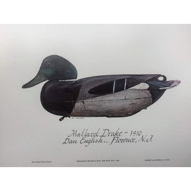 Mallard Drake 1910 - The Classic Decoy Series, Winchester Press, NY 1969 limited series of 1000. This is a lovely print of...