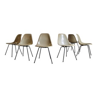 Eames First Production Venice Side Shell Dining Chairs - Set of 6 For Sale